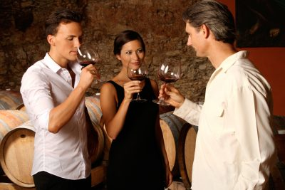 Wine Tour of Ribera del Duero from Madrid
