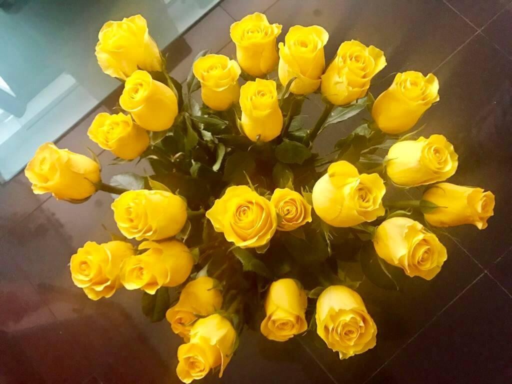 цветы в испании